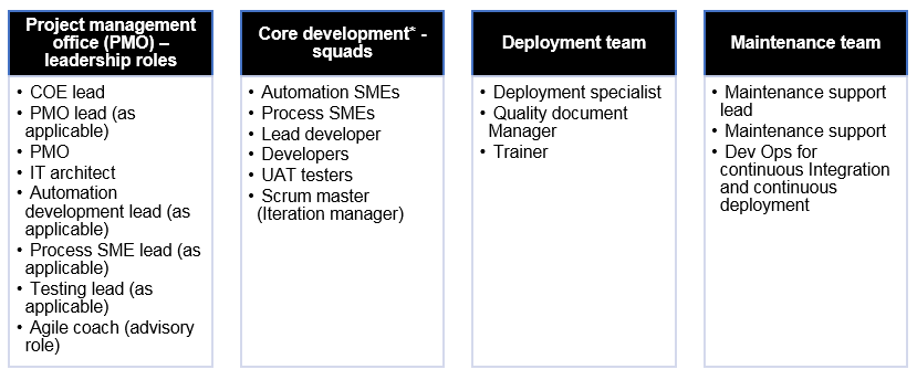 This table lists the roles that fall under four categories: project management office leadership roles, core development squad roles, deployment team roles, and maintenance team roles.