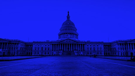 IBM BlueWolf digitally reinvent government