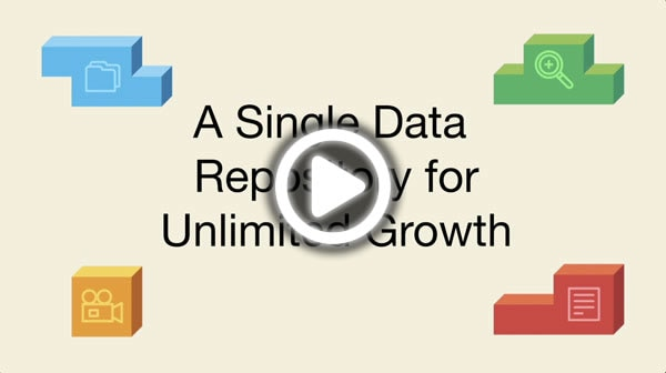 A Single Data Repository for Unlimited Growth