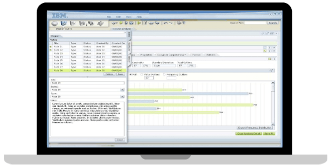 screenshot - IBM InfoSphere Information Analyzer