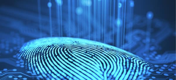 Digital image of a fingerprint