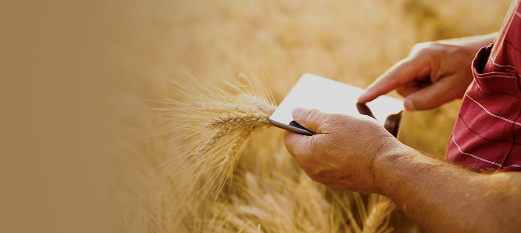 Modern Agriculture Technology | The Weather Company, an IBM Business