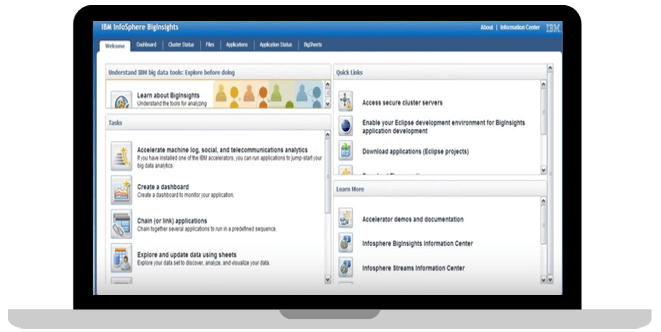 IBM BigQuality screenshot