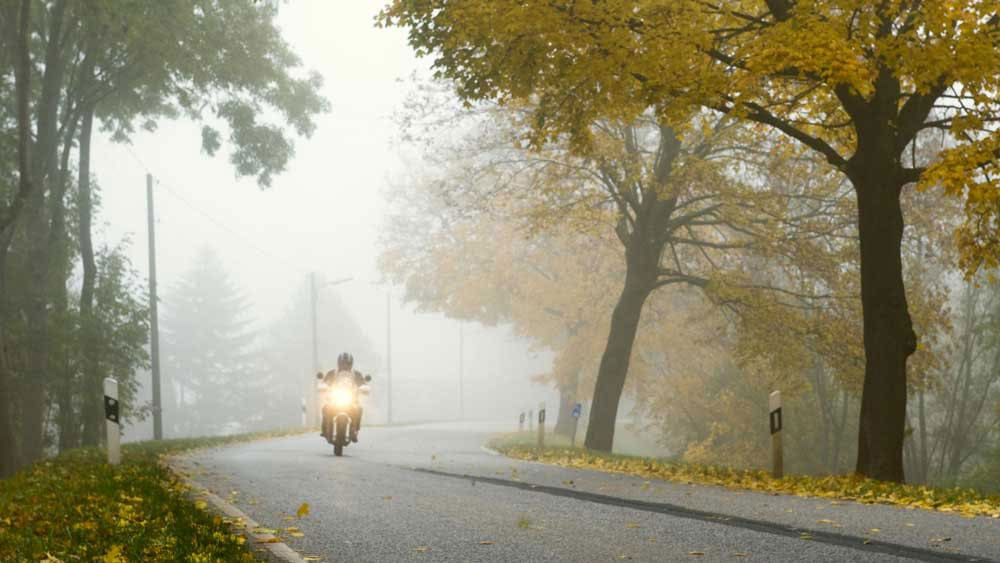 person driving a motorcycle on a road during the fall with yellow leaves