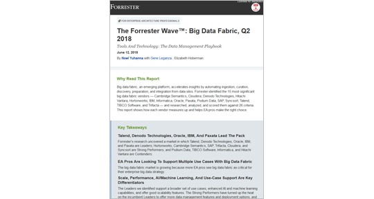 The Forrester Wave: Piktogramm für Big Data