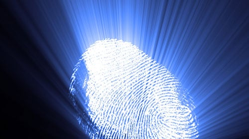 a digital fingerprint