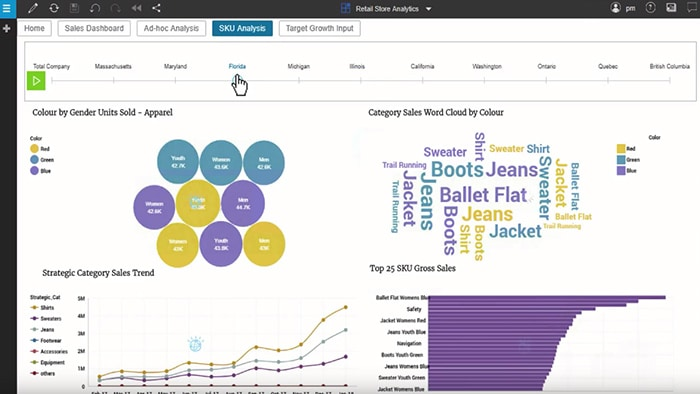 Still image from the IBM Planning Analytics Overview video