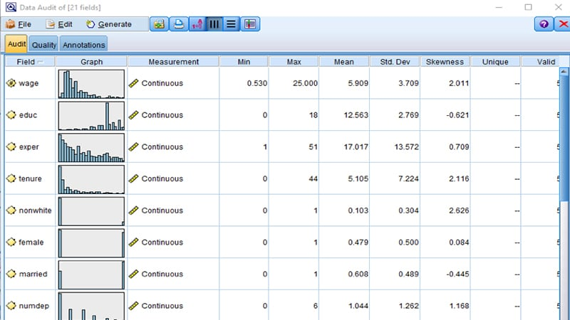 Profiling and Data Auditing functionality and interface within SPSS Modeler
