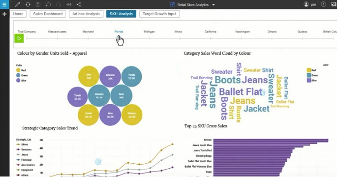 IBM Planning Analytics Overview