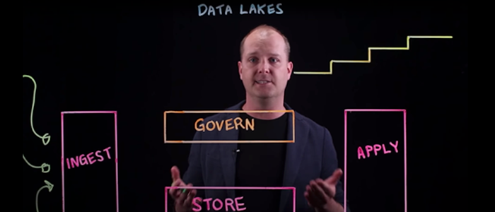 Screen shot from video on what is a data lake