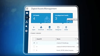 Discover digital asset management capabilities with IBM Master Data Management Collaborative Edition video image