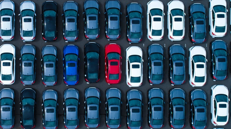Blue and white cars lined up in a parking lot as seen from above