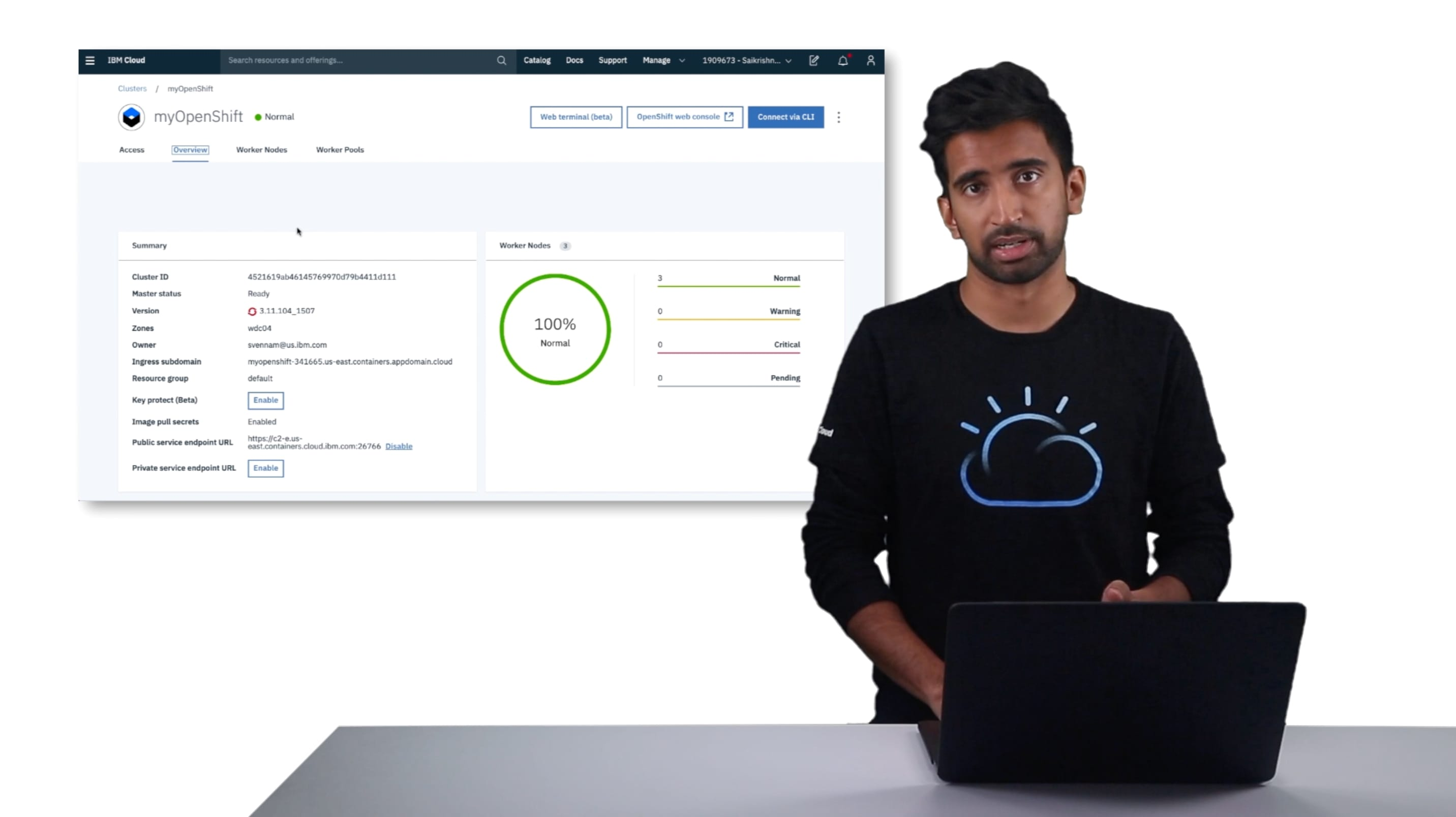 Viewing a cluster through the IBM Cloud console