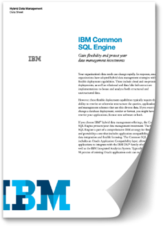 Image representing the IBM Common SQL Engine data sheet