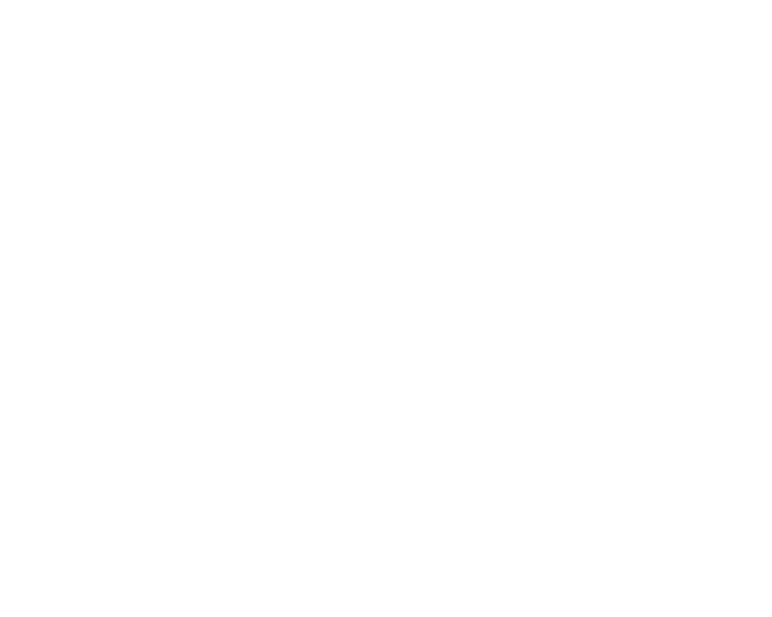 2019 Gartner Peer Insights Customers Choice 어워드