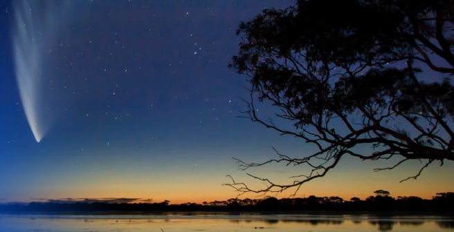 end of sunset as seen on wild nature with stars filling the sky and a tree on counter light