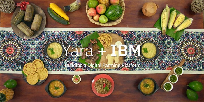 Yara and IBM