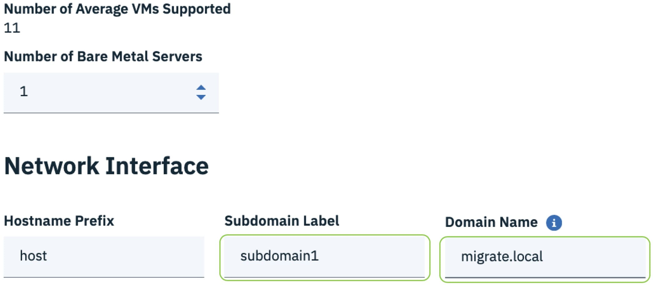 Scroll down to Network Interface and name your Subdomain Label (e.g.,  subdomain1) and Domain Name (e.g., migrate.local).