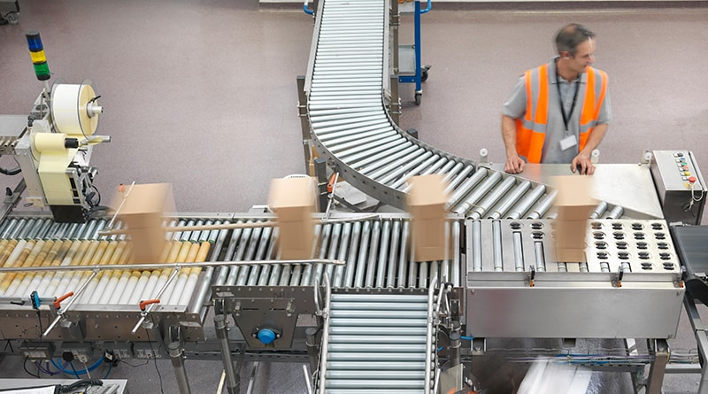 Workers managing the conveyor belt in a packaging facility