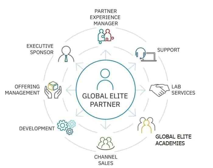 Illustration of all disciplines involved in the Global Elite for Partners program