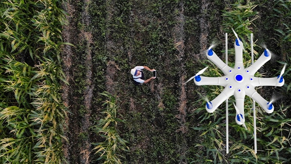 Top view of a flying drone over a crops field