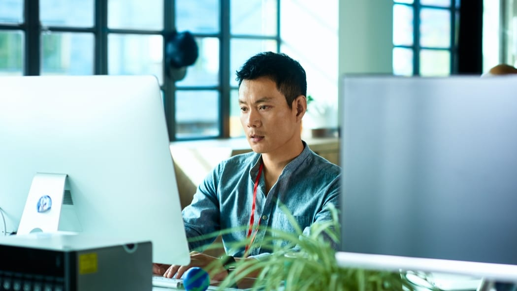 man sitting at desk looking at computer monitor with green plant to his side