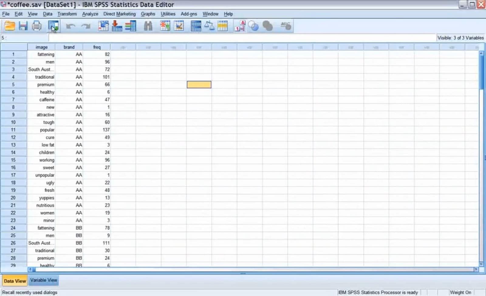 IBM SPSS Categories in azione