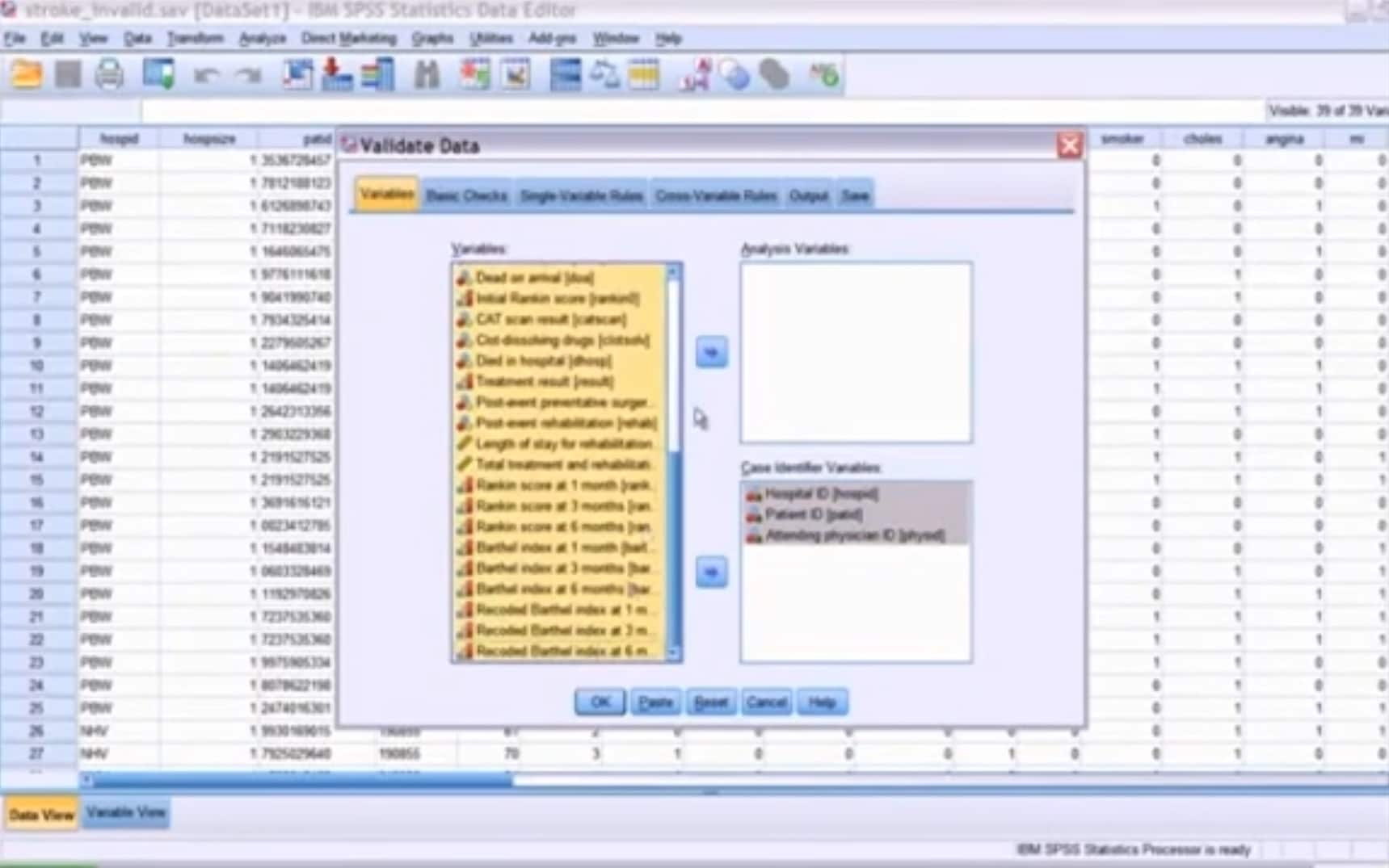IBM SPSS Data Preparation Demo