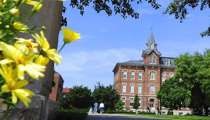 Yellow flowers against a campus backdrop