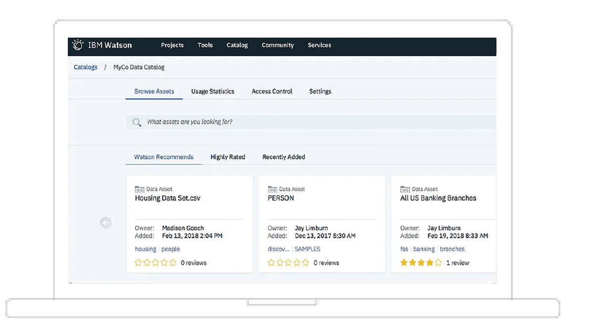 screenshot of Watson knowledge catalog interface