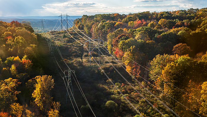 Twin sets of power lines and electrical towers extend across a cleared section of heavily forested area.