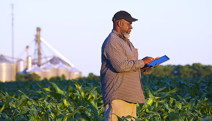 Farmer in a field using a tablet