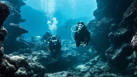 Three divers underwater inspecting reefs