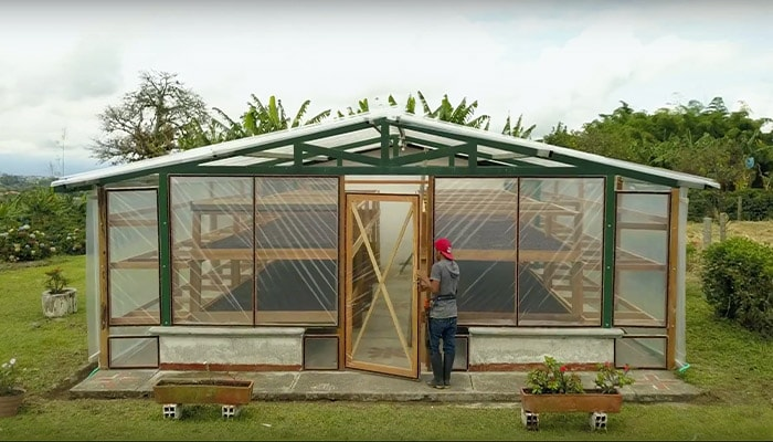 Man entering a greenhouse