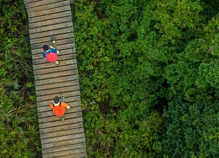People walking on a bridge in the nature
