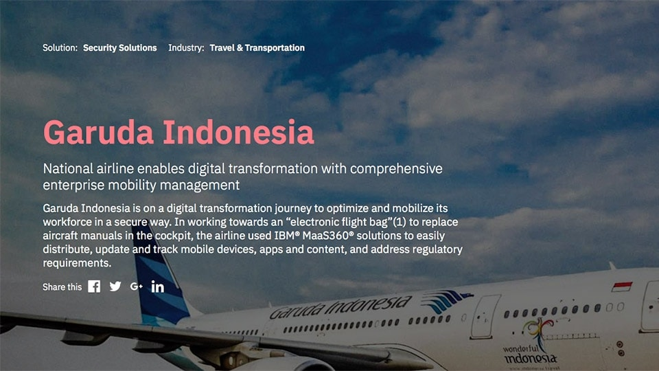 Screen shot of Garuda International case study
