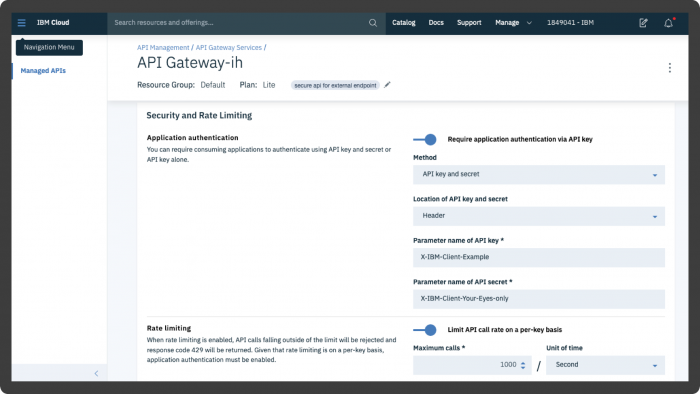 Screenshot showing Secure Gateway's API Gateway application authentication via API key