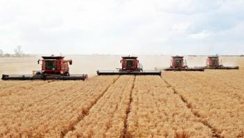 Harvesters on field