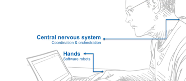 Illustration showing how bot capabilities correspond to skills provided by the human central nervous system and hands